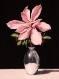 1.-Pink-magnolia-40x30cm.-oil-on-copper-2020